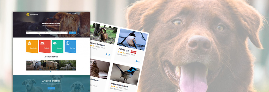 Classifieds ads animals website template for Joomla