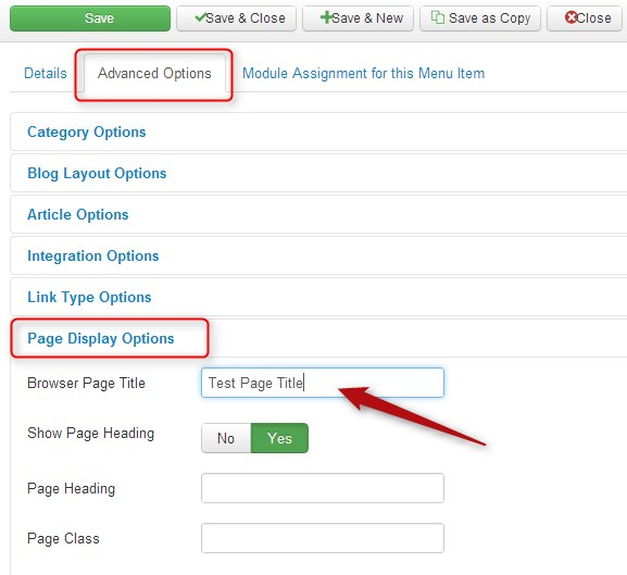 How to change browser page title in Joomla?