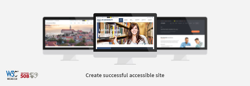 create cuccessful accessible site