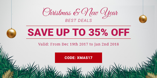 christmas new year sale